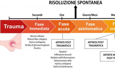 ARTRITE POST-TRAUMATICA: MECCANISMI PATOGENETICI E RUOLO DELL'INFIAMMAZIONE